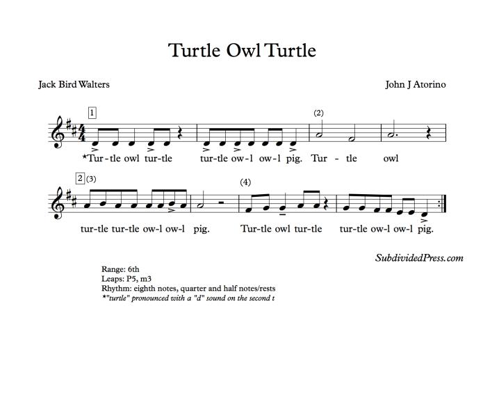 turtle owl turtle